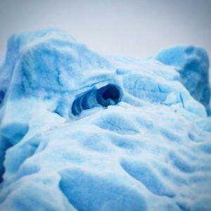 Arctic mole